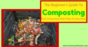 The Beginners' Guide To Composting at Home